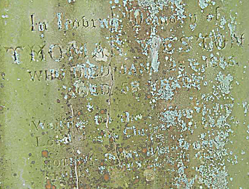 Gravestone with slightly legible writing